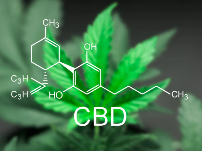 CBD Is Great for Sleep, But Will It Make You Tired During the Day?